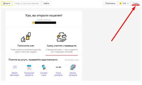 Snyat_dengi1